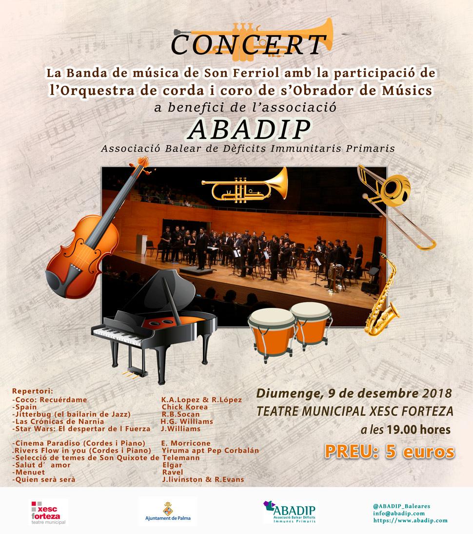 concierto ABADIP